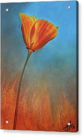 Resilience Acrylic Print by Robin Street-Morris