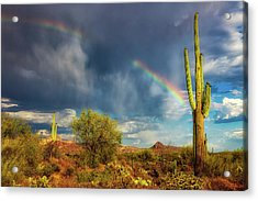 Acrylic Print featuring the photograph Respite From The Storm by Rick Furmanek