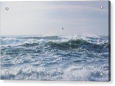 Acrylic Print featuring the photograph Reynisfjara Seagull Over Crashing Waves by Nathan Bush