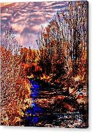 Rio Taos Bosque V Acrylic Print