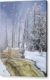 River Of Gold - Jo Ann Tomaselli Acrylic Print