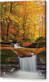 River Rapid Acrylic Print