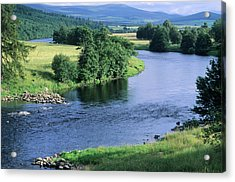 River Spey Near Grantown, Scottish Acrylic Print by Neil Holmes
