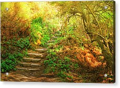 Rock Stairs Acrylic Print