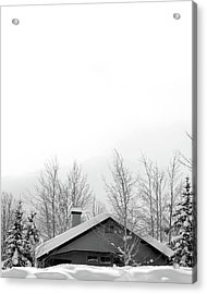 Roof Top Acrylic Print by Dana Klein