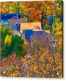Rooftops Acrylic Print