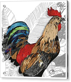 Rooster On Big Island Acrylic Print