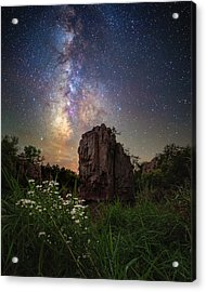 Acrylic Print featuring the photograph Royalty  by Aaron J Groen