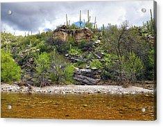 Sabino Creek Acrylic Print