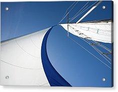 Sailing Acrylic Print by Tammy616