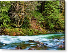 Acrylic Print featuring the photograph Salmon River Mt. Hood National Forest by Dee Browning