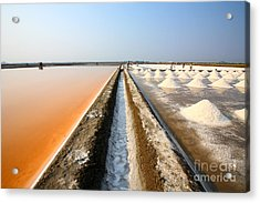 Salt Fields At Phetchaburi, Thailand Acrylic Print