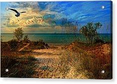 Sand Track To The Ocean At Dusk Acrylic Print