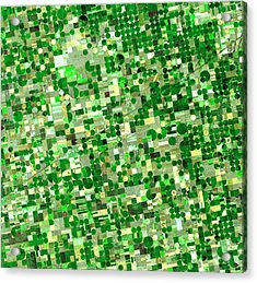 Satellite View Of Crop Circles In Acrylic Print by Education Images
