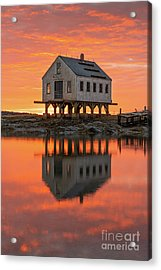 Scorched Symmetry Acrylic Print