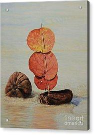 Sea Grape Sails Acrylic Print