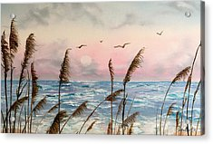 Sea Oats And Seagulls  Acrylic Print