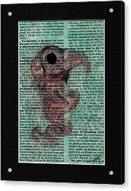 Sea Raven  Acrylic Print