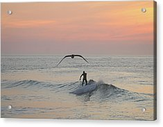 Seagull And A Surfer Acrylic Print
