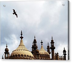 Seagull And Brightonpavillion Acrylic Print by Darren Lehane