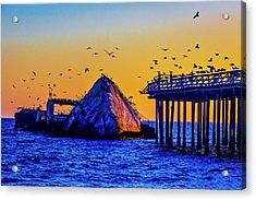 Seagulls And Sunken Ship Acrylic Print