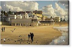 Acrylic Print featuring the photograph Seagulls At Caleta Beach Cadiz Spain by Pablo Avanzini