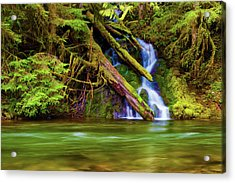 Seasonal Runoff Acrylic Print