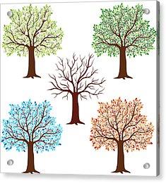 Seasonal Trees Acrylic Print by Flyinggiraffestudio