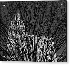 Acrylic Print featuring the photograph Seasonal View Bw by Patrick M Lynch