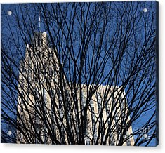 Acrylic Print featuring the photograph Seasonal View C by Patrick M Lynch