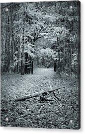 Selenium Trail  Acrylic Print