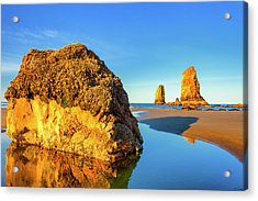 Acrylic Print featuring the photograph Sentinels Of Land And Sea by Dee Browning