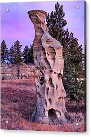 Shapes Of Time In Sandstone Acrylic Print by Leland D Howard
