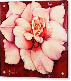 Sheer Bliss Acrylic Print