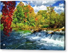Acrylic Print featuring the photograph Sidelined Beauty by Lynn Bauer