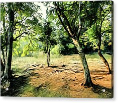 Silence Of Forest Acrylic Print