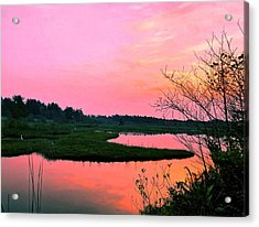 Acrylic Print featuring the photograph Sitka Sedge Sunset by Chriss Pagani