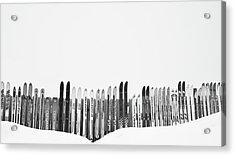 Ski Season Acrylic Print by Dana Klein