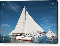 Acrylic Print featuring the photograph Skipjack Rosie Parks by Mark Duehmig