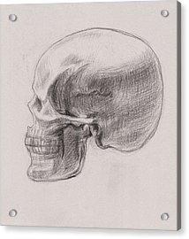 Skull Study Profile Acrylic Print
