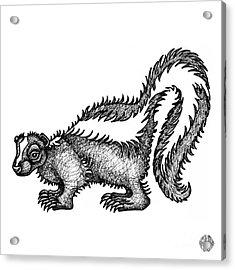 Skunk Acrylic Print