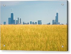 Skyscrapers Arising From Grass Acrylic Print by By Ken Ilio