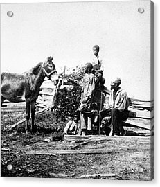 Slaves Acrylic Print by Archive Photos