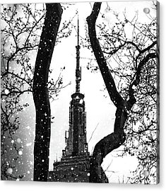Snow Collection Set 07 Acrylic Print