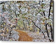 Snow Greets Autumn Acrylic Print