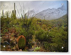Snow In The Desert Acrylic Print