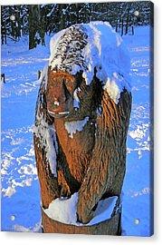 Snowy Gorilla Acrylic Print