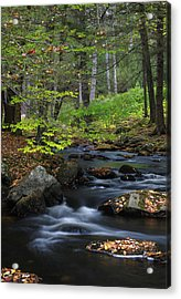 Acrylic Print featuring the photograph Some Day by Juergen Roth