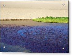 Sonoma Coast_al_560 Acrylic Print