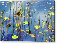Acrylic Print featuring the photograph Soothing Reflections by Dee Browning